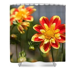 Sunshine Flower Shower Curtain