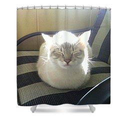 Sunshine Kitty Shower Curtain by Deborah Lacoste