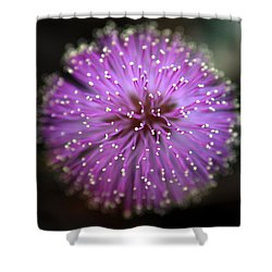 Sunshine Mimosa Shower Curtain