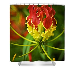 Sunshine On A Cloudy Day Shower Curtain by Beverly Stapleton