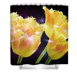 Sunshine Tulips Shower Curtain by Debra  Miller