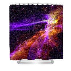 Supernova In Cygnus Shower Curtain