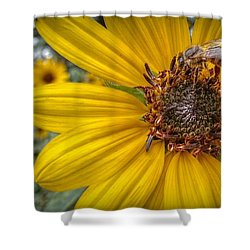 Supper Time Shower Curtain by Linda Unger