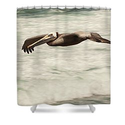 Shower Curtain featuring the photograph Surf Fishing Pelican by Daniel Hebard