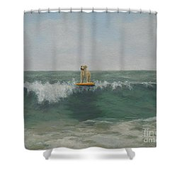 Surfer Lab Shower Curtain