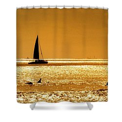 Surfers And Sailboats Shower Curtain