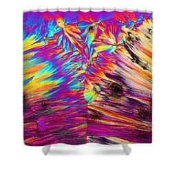 Surfin' Safari Shower Curtain