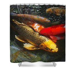 Surreal Fishpond Shower Curtain by Adria Trail