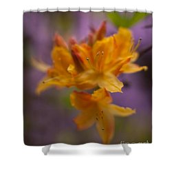 Surrealistic Blooms Shower Curtain by Mike Reid
