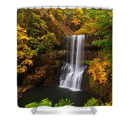 Surrounded By Fall Shower Curtain by Darren  White