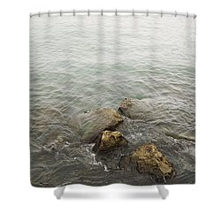 Surrounded Shower Curtain by Margie Hurwich