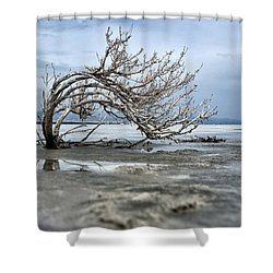 A Smal Giant Bush Shower Curtain by Mike Santis