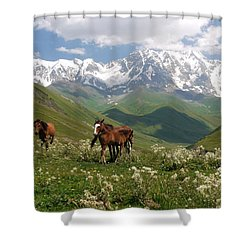Svaneti  Shower Curtain