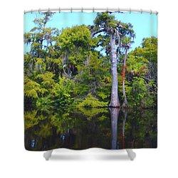 Swamp Land Shower Curtain