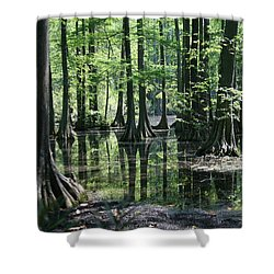 Shower Curtain featuring the photograph Swamp Land by Cathy Harper