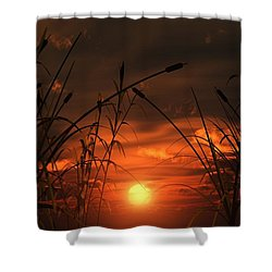 Swamp Sunset  Shower Curtain