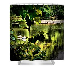 Swan Dive Shower Curtain