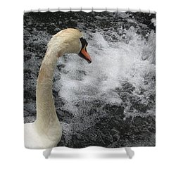 Shower Curtain featuring the photograph Swan Falls by Amanda Eberly-Kudamik