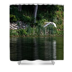 Shower Curtain featuring the photograph Swan In Flight by Eleanor Abramson