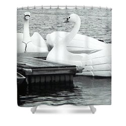 White Swan Lake Shower Curtain by Belinda Lee