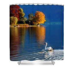 Beautiful Autumn Swan At Lake Schiliersee Germany  Shower Curtain