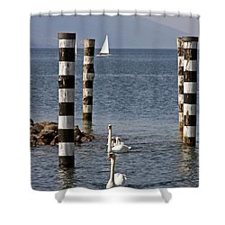 Shower Curtain featuring the photograph Swan Lake by Leena Pekkalainen
