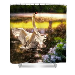 Swan Lake Shower Curtain by Lois Bryan
