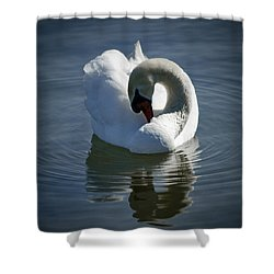 Shower Curtain featuring the photograph Swan Lake by Pennie  McCracken