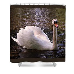 Swan Pose Shower Curtain by Rona Black
