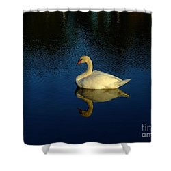 Swan Reflection Shower Curtain by Bob Sample