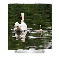 Shower Curtain featuring the photograph Swan Song by Rona Black