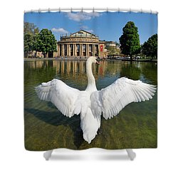 Swan Spreads Wings In Front Of State Theatre Stuttgart Germany Shower Curtain by Matthias Hauser