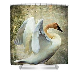 Swan - Summer Home Shower Curtain