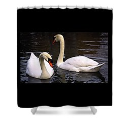 Swan Two Shower Curtain