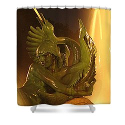 Shower Curtain featuring the photograph Swann Fountain by Christopher Woods