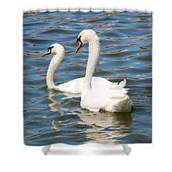 Swans And Swirls Shower Curtain by Carol Groenen