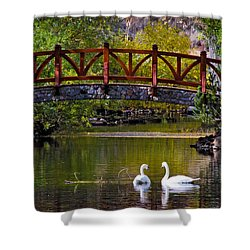 Shower Curtain featuring the photograph Swans At Caughlin Ranch II by Janis Knight