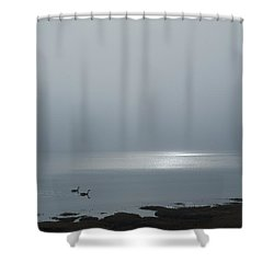 Swans At Sunrise Shower Curtain by Rick Mosher