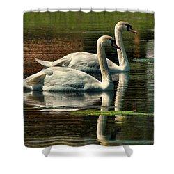 Swans Cruising Shower Curtain