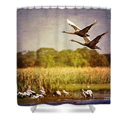 Swans In Flight Shower Curtain