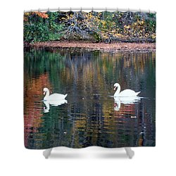 Shower Curtain featuring the photograph Swans by Karen Silvestri