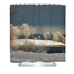 Shower Curtain featuring the photograph Swans On A Frosty Day by Randi Grace Nilsberg