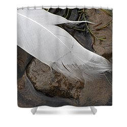 Shower Curtain featuring the photograph Sway With The Movement Of The Water by Tiffany Erdman