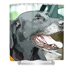 Sweet Amos Shower Curtain by Alice Gipson