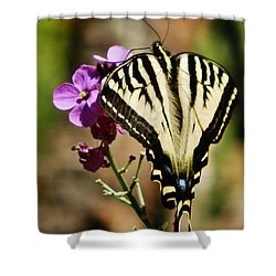 Sweet Attraction Shower Curtain