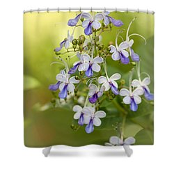 Sweet Butterfly Flowers Shower Curtain