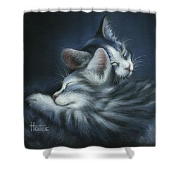 Shower Curtain featuring the drawing Sweet Dreams by Cynthia House