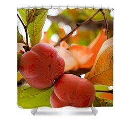 Shower Curtain featuring the photograph Sweet Fruit by Erika Weber