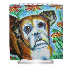 Sweet Ginger Shower Curtain by Diane Pape
