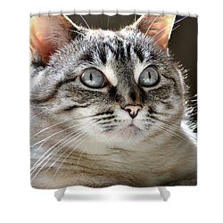 Sweet Innocence Shower Curtain